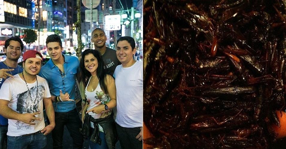 19.jul.2013 - No Japão, Luan Santana experimenta gafanhoto frito