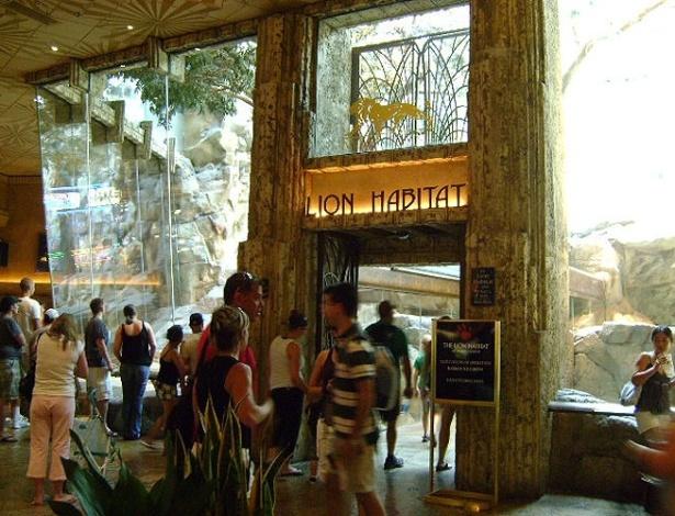 Um grande aquário de acrílico serve como jaula para leões no MGM Grand. A atração é de graça