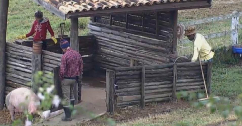 25.jul.2013 - Bárbara Evans cuida dos porcos e Ivo e Mateus a acompanham