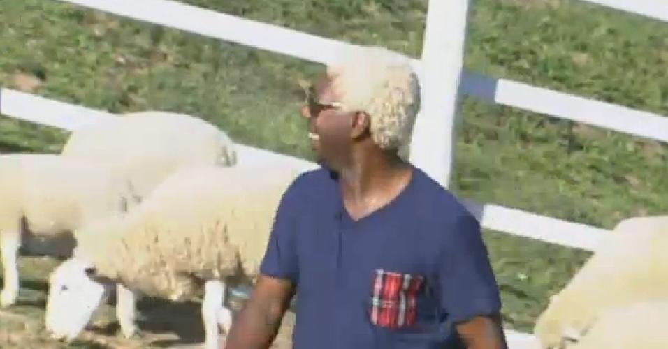 03.ago.2013 - Ivo Meirelles zoa Marcos Oliver por causa da dificuldade do ator em controlar os porcos
