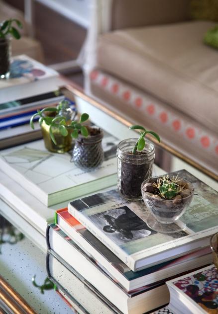 (Imagem do NYT, usar apenas no respectivo material) Detalhe da mesa de centro que decora uma das salas da família, em Minneapolis. Sobre o móvel, alguns livros e pequenos  vasos com plantas naturais