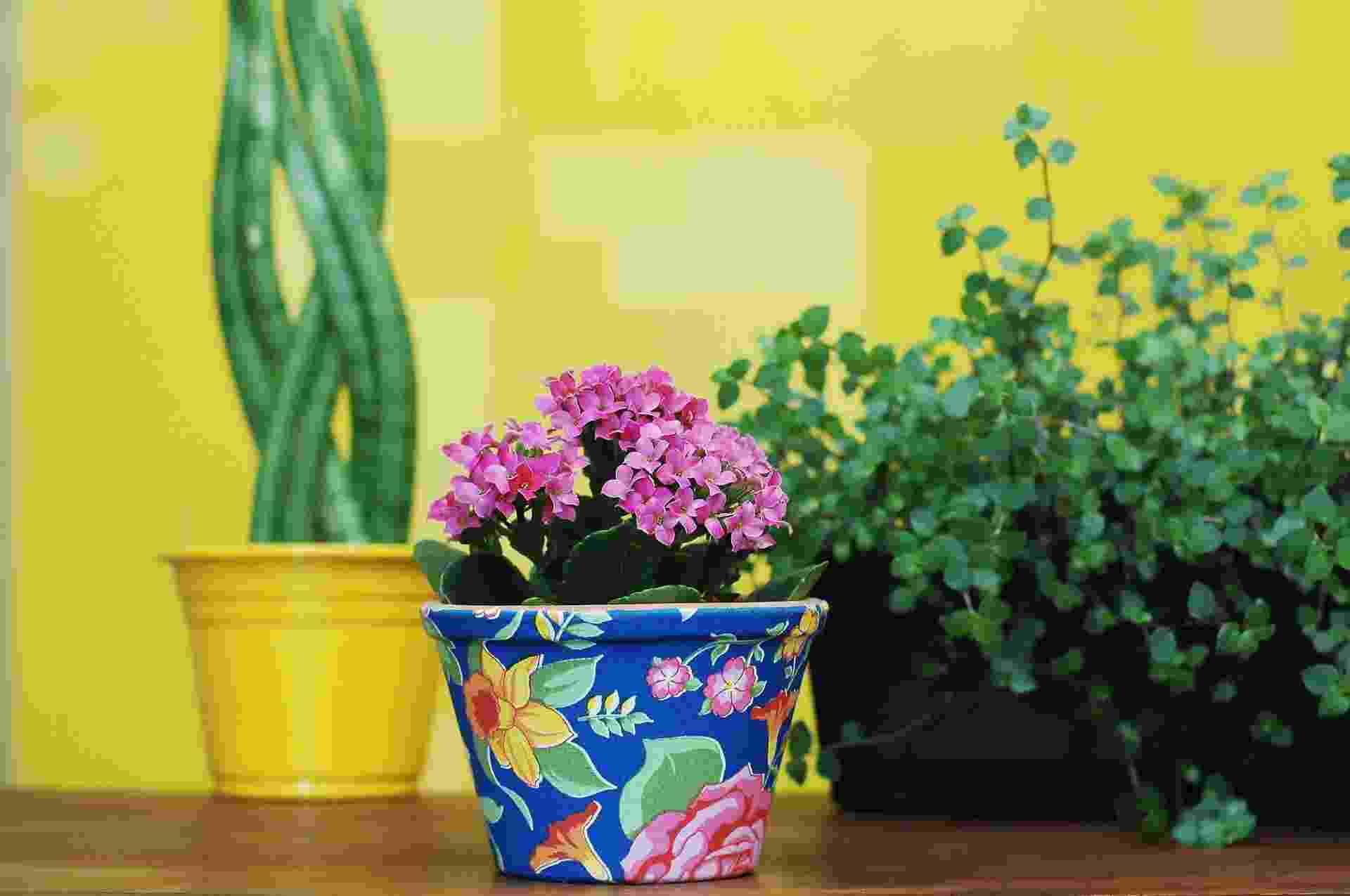 Você vai deixar o cantinho das plantas mais alegre, se encapar o vaso com tecido. Fabianne Favaretti, da Poppelina (www.poppellina.com.br), ensina os passos para você também fazer o seu - Reinaldo Canato/ UOL