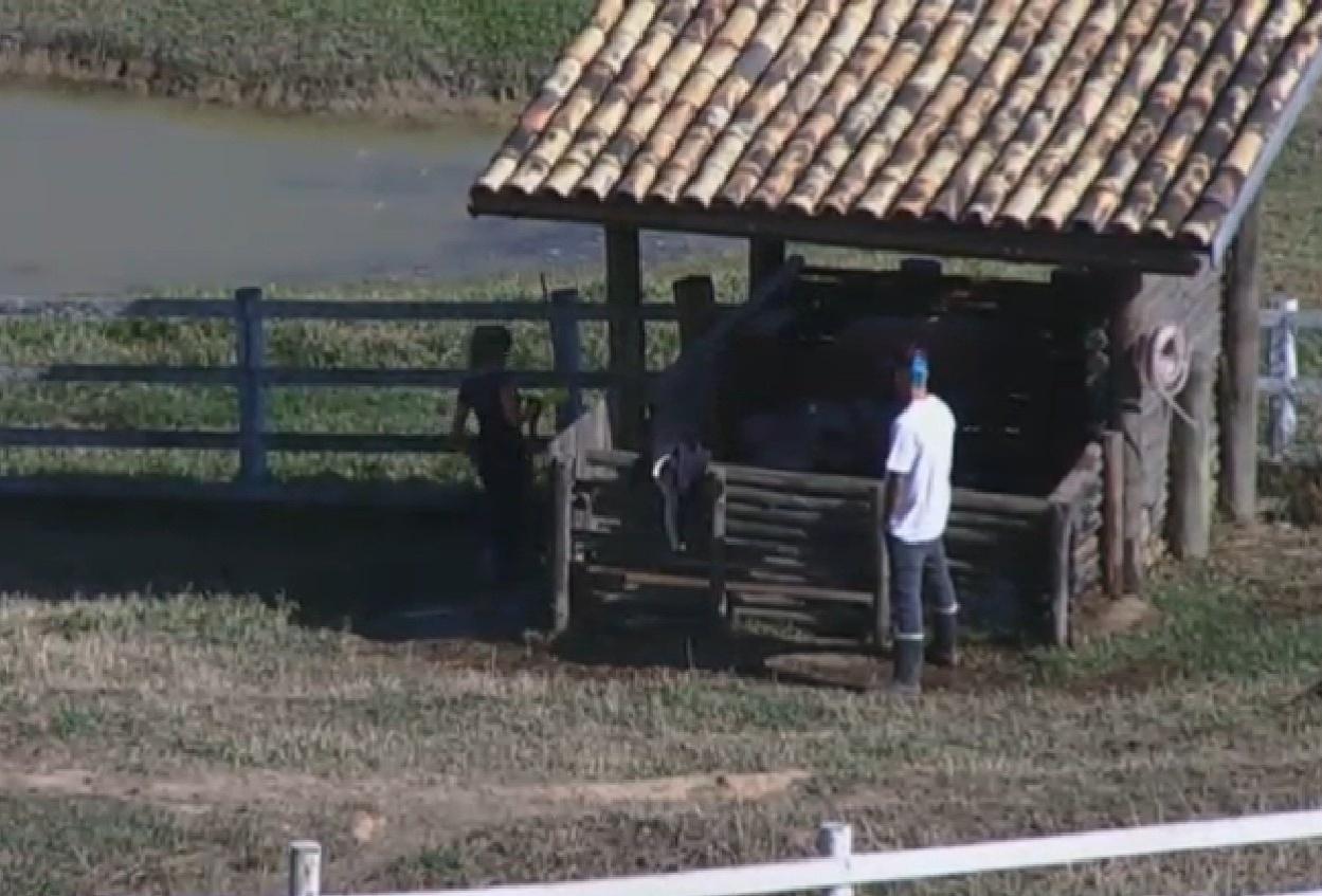 12.ago.2013 - Depois do banho, o fazendeiro da semana foi fiscalizar o trabalho dos peões