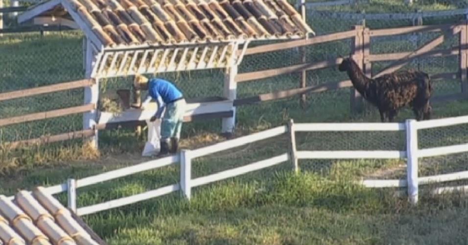 20.ago.2013 - Bárbara faz carinho nas cabras na manhã desta terça