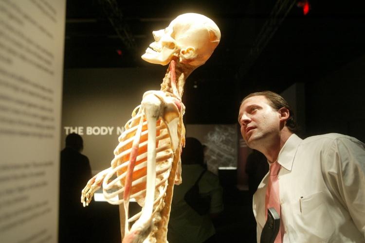 Visitante uma das peças expostas na Bodies: The Exhibition, em Las Vegas