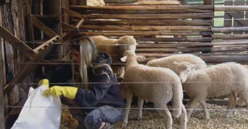 26.ago.2013 - Bárbara cuida das ovelhas