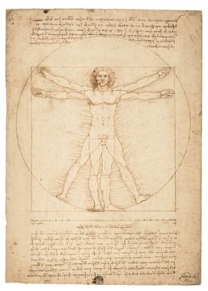 """As Proporções do Corpo Segundo Vitruvio"", de Leonardo da Vinci (Galleria dell""Accademia de Veneza) - Reprodução/Galleria dell""Accademia de Veneza"