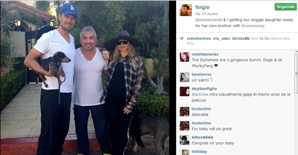 Grávida, Fergie contrata adestrador para preparar sua cachorra