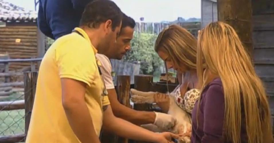 03.set.2013 - Denise Rocha segura cabritinho enquanto veterinário cuida do animal