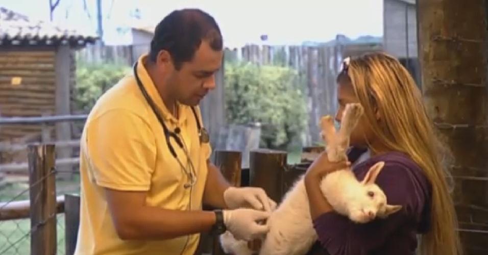 03.set.2013 - Veterinário cuida de cabritinhos recém-nascidos