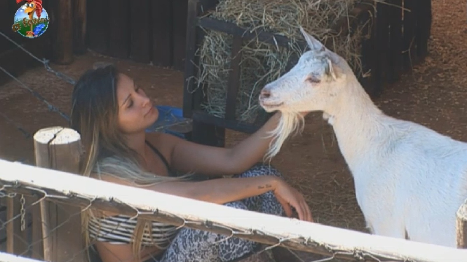 6.set.2013 - Andressa Urach faz carinho na cabra