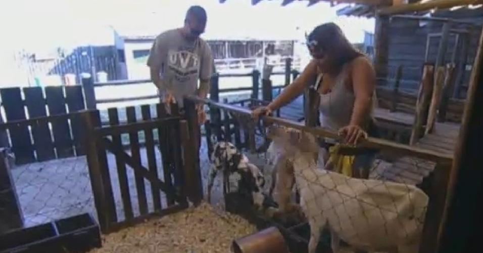 09.set.2013 - Mateus Verdelho ajuda Mulher Filé a cuidar das ovelhas
