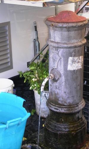 Detalhe do clássico ?nasone? (narizão), as fontes de água potável e gratuita espalhadas por toda a cidade
