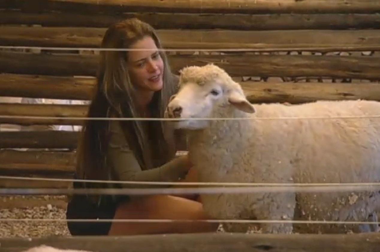 15.set.2013 - Denise Rocha abraça e beija ovelhas da