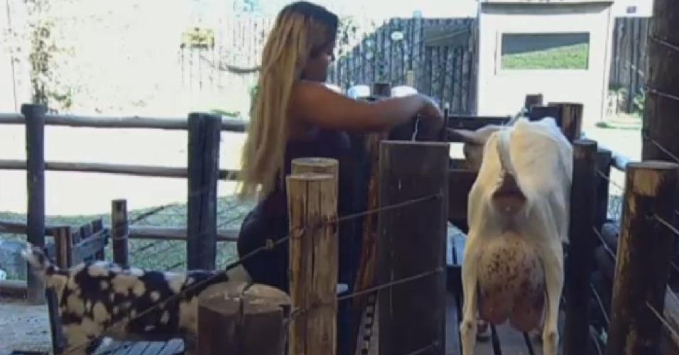 15.set.2013 - Yani cuidou das cabras pela manhã