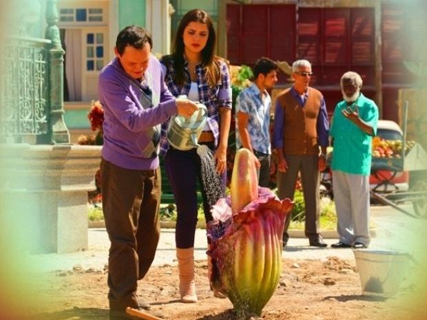 """Em """"Saramandaia"""", flor que nasceu após explosão fica maior após raio cair"""