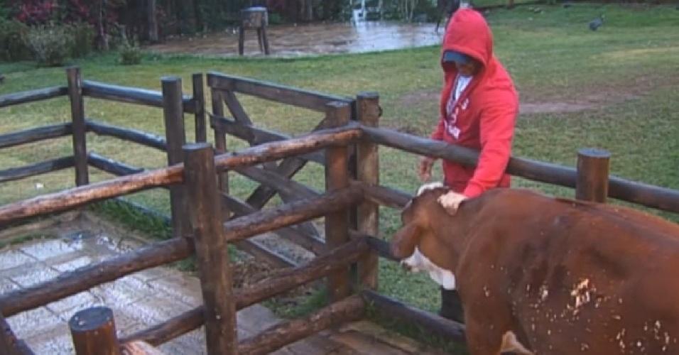 18.set.2013 - Marcão cuidou das vacas pela manhã