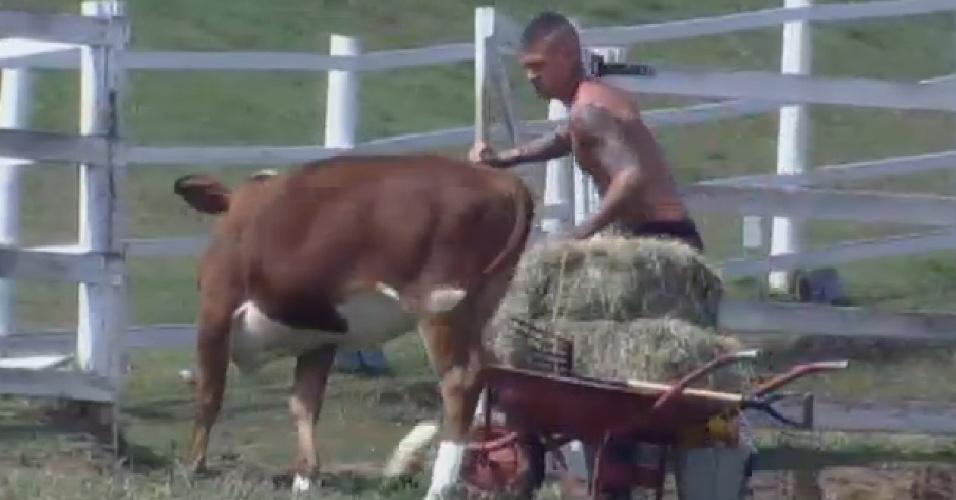 19.set.2013 - Mateus Verdelho cuidando das vacas