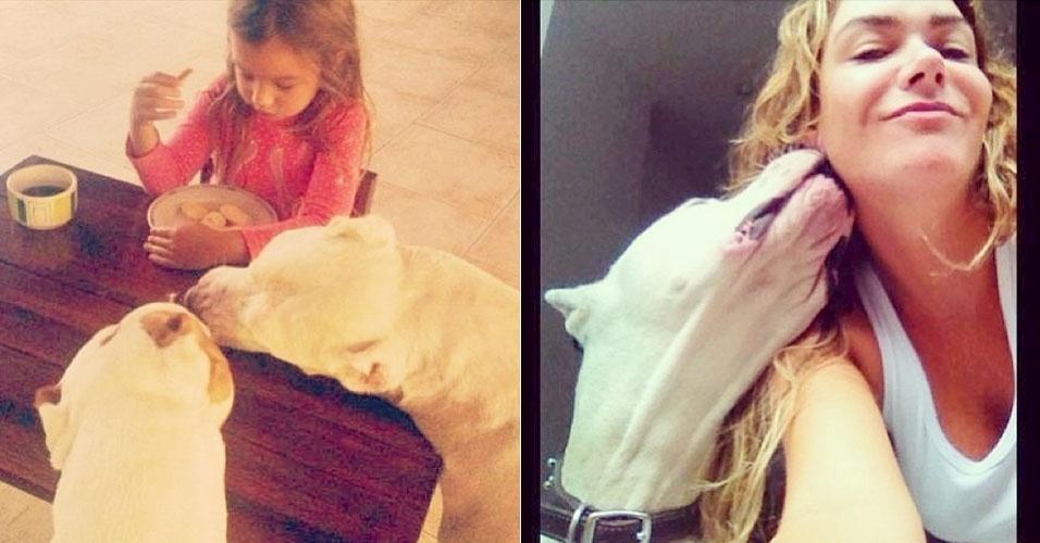 11.out.2013 - Luize Altenhofen faz carinho em pitbull e mostra momento da filha ao lado dos cães
