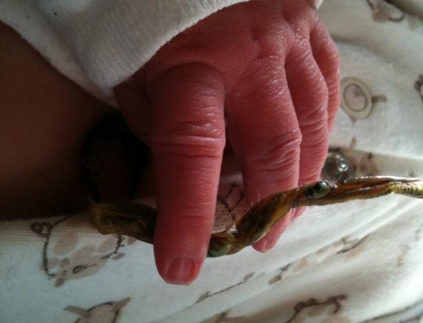 Muitas mães têm optado por não cortar o cordão umbilical e manter a placenta ligada ao bebê - BBC