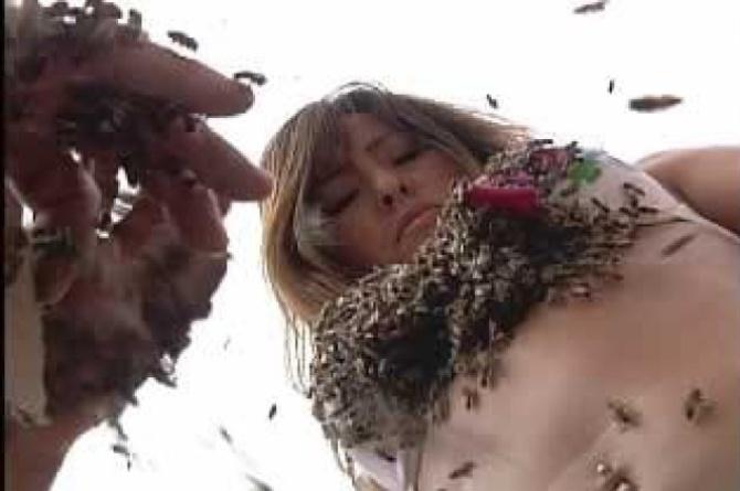 Sabrina Sato já ficou com o corpo coberto de abelhas no