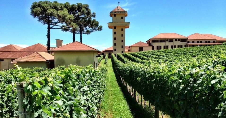 A Miolo é uma das vinícolas que recebem visitas turísticas na cidade de Bento Gonçalves, no Vale dos Vinhedos (RS)