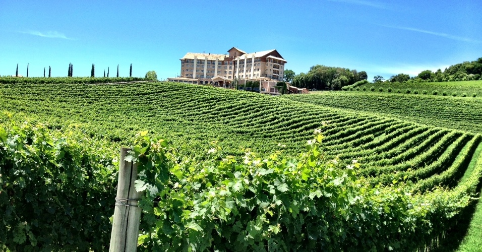 Vinhedos da cidade de Bento Gonçalves (RS). Região abriga vinícolas como a Miolo, Casa Valduga e Salton, que recebem visitas de turistas