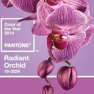 Radiant Orchid, eleita a cor de 2014 pela Pantone