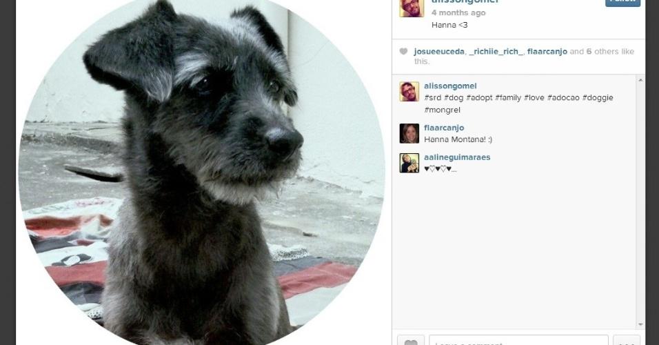 Alisson tem essa cadelinha, que foi adotada e chama Hanna