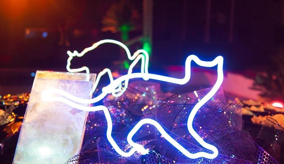 01.fev.2014 - Decoração da festa Cats