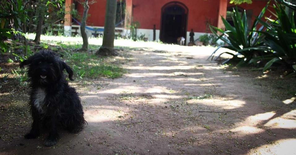 3.fev.2014 - Chácara Casa do Sol, onde morou a escritora Hilda Hilst, no Parque Xangrilá, em Campinas