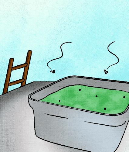 Por que limpar a caixa d'água? - Erick Souza/ Arte UOL
