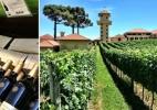 Vinícolas gaúchas oferecem spa, visita a palácio e vinho servido ao papa - Arte/UOL