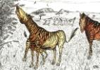 Animal pré-histórico tinha características de zebra, cavalo e elefante