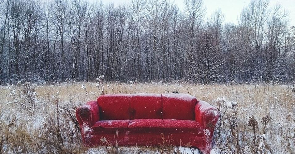 O fotógrafo canadense Andrew Knapp resolveu aproveitar o comportamento agitado de seu border collie Momo e fez fotos em que o cachorro se esconde em paisagens e ruas dos EUA e Canadá. Acima, Momo em Sudbury, Ontario, Canadá