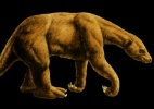 Paleontólogo encontra fósseis de espécie de preguiça extinta há 11 mil anos