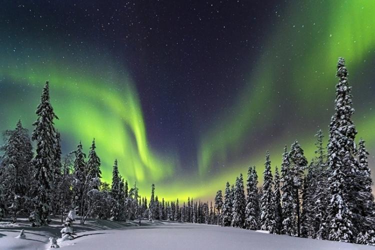 Aqui, Roemmelt fotografou a Aurora Boreal na floresta do Parque Nacional Pyhae Luosto, na Finlândia