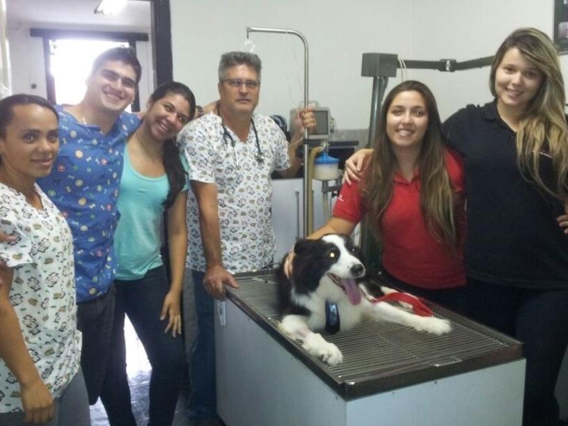 Renato Iazzetti e a equipe de veterinária da Med Dog, localizada no Cambucci, em São Paulo