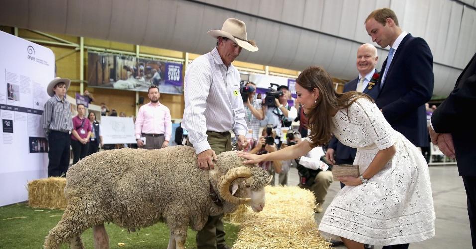 17.abr.2014 - Ao lado de Príncipe William, Kate Middleton acaricia ovelha na Sydney Royal Easter Show, feira agrícola tradicional da Austrália. O casal real está na terceira semana do tour pela Austrália e Nova Zeldândia, na primeira viagem internacional com o filho, o príncipe George