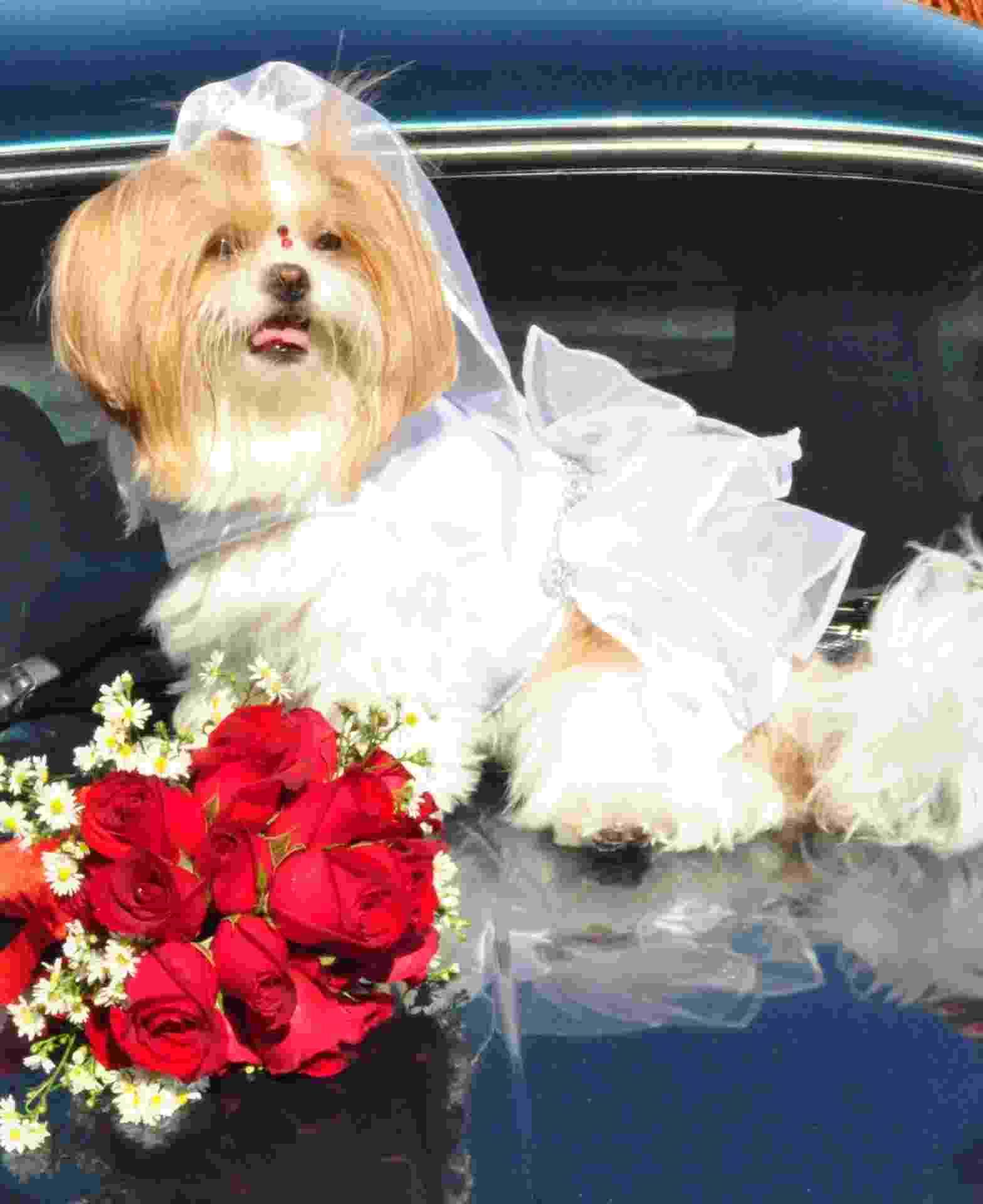 Vestido de noiva em cetim e organza, com laço véu. Da Legal Pra Cachorro - Divulgação