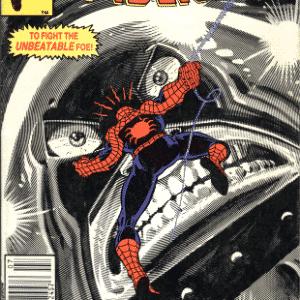 NADA PODE DETER O FANÁTICO: (The Amazing Spider-Man #229-230) - Reprodução