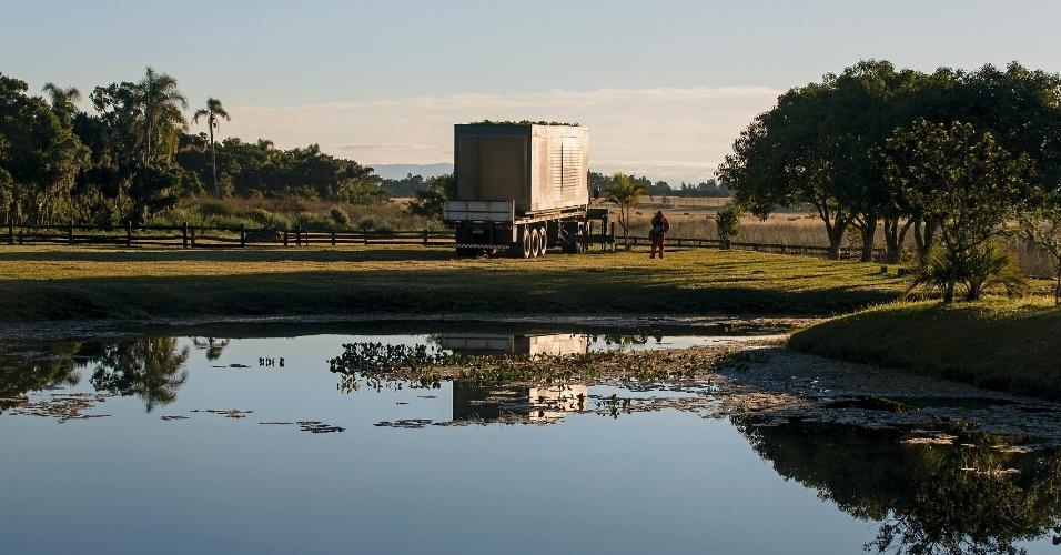 A casa MiniMod, projetada pelo escritório MAPA, é pré-fabricada e pode ser levada a qualquer local como sítios, pousadas e casas de praia. O protótipo da residência móvel está instalado numa fazenda perto de uma lagoa, em Maquiné (RS)