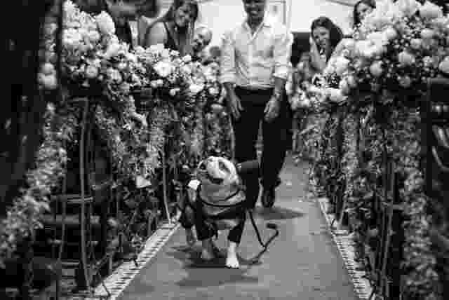 """Vencedor da categoria """"Pet on Weddings"""", o cachorro Panqueca, que fez parte da cerimônia de casamento de Roberta Teixeira e Helio Salathiel. - Luiza Reis"""