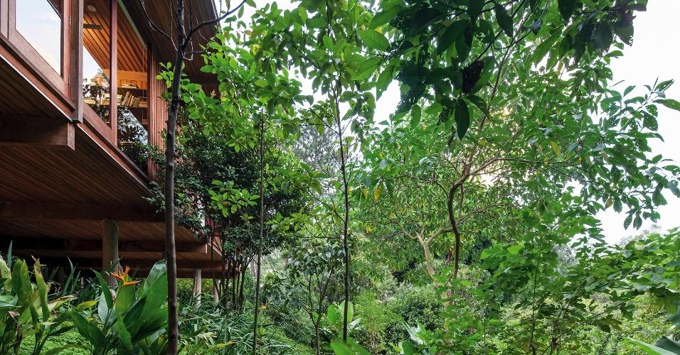 Apoiada sobre colunas de concreto e construída com madeira cumaru, a Casa Vila Taguaí, projetada por Cristina Xavier e Hélio Olga, tem os ambientes sociais na altura das copas das árvores