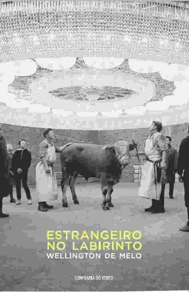 """Capa do livro """"Estrangeiro no Labirinto"""", de Wellington de Melo - Reprodução"""