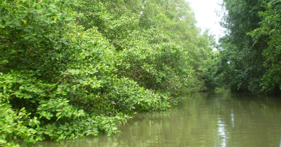 O rio Preguiças é o caminho para Caburé, no Maranhão