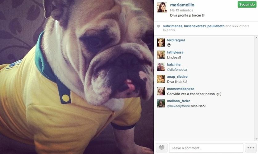 """17.mai.2014 - Maria Melilo coloca camisa do Brasil em sua cachorra para torcer pela seleção no jogo contra o México. """"Diva pronta para torcer!!"""", escreveu a ex-BBB na legenda da imagem"""
