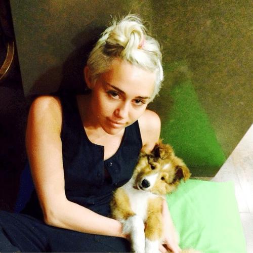 """3.jul.2014 - Ao contrário das várias polêmicas, Miley Cyrus postou em seu Instagram uma foto mais """"fofinha"""" com seu cachorrinho"""