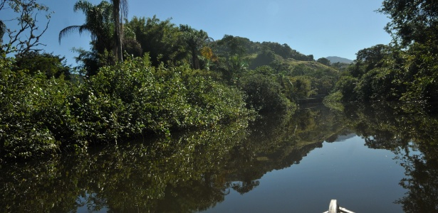 Mata Atlântica na Barra do Sahy, litoral norte de São Paulo