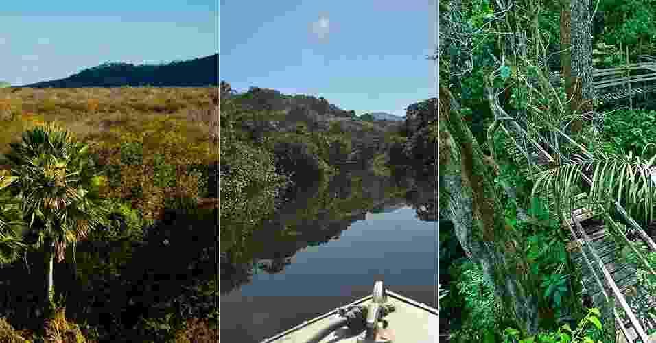 Montagem - caatinga, floresta amazônica e mata atlântica - UOL Casa - Renato Stockler/Na Lata/ Antônio Gaudério/Folha Imagem/ Karime Xavier/Folhapress/ Montagem UOL